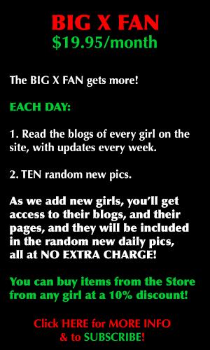 Big X Fan