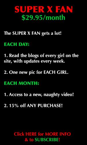 Super X Fan